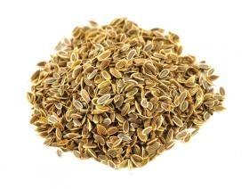 Dill Seeds Bulk Dry Herb
