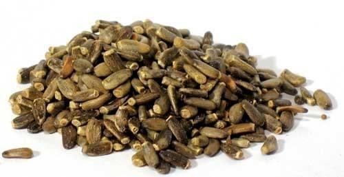 Milk Thistle Fruit Bulk Dry Herb