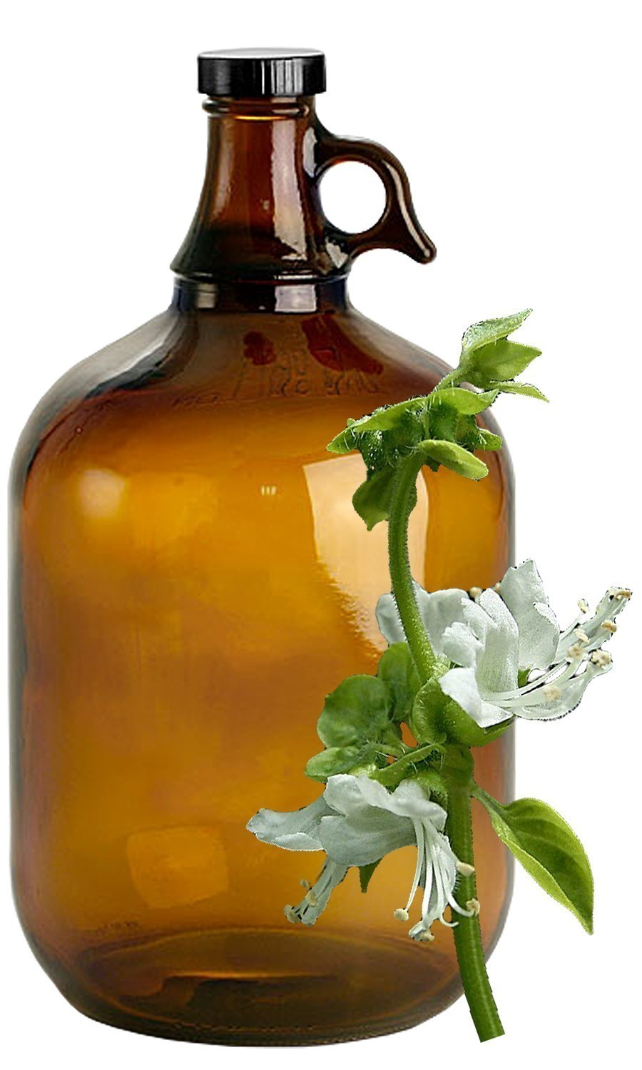 Basil Bulk Liquid Extracts