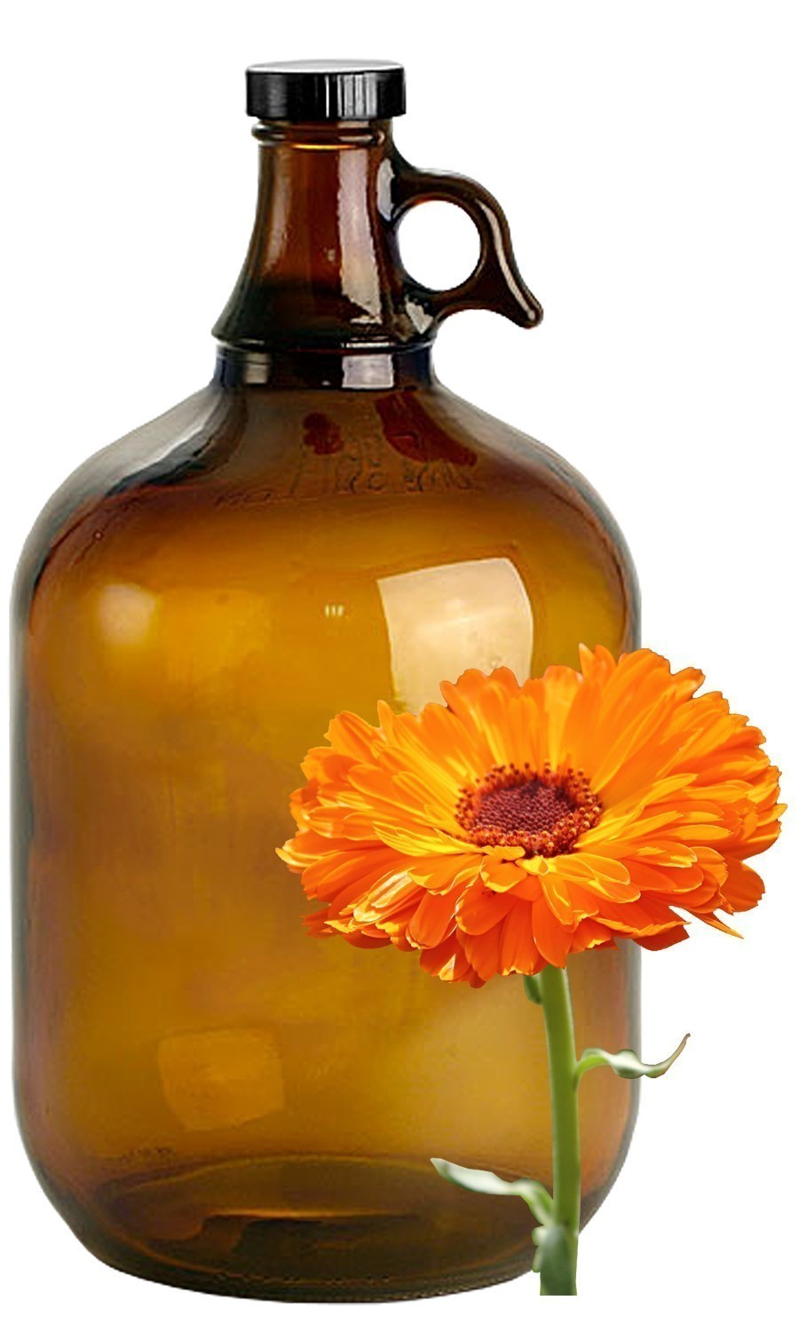 Calendula Bulk Liquid Extracts