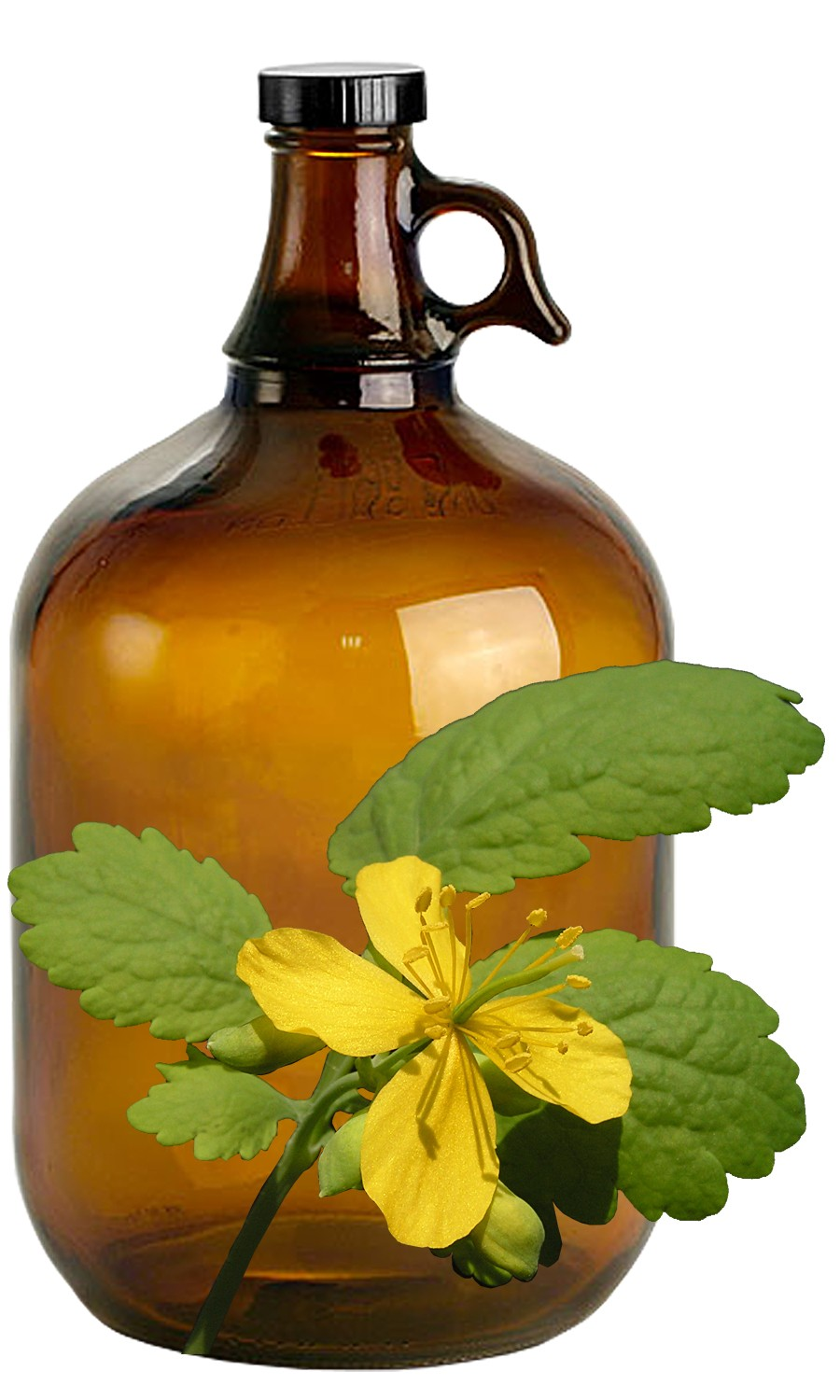 Celandine Bulk Liquid Extracts