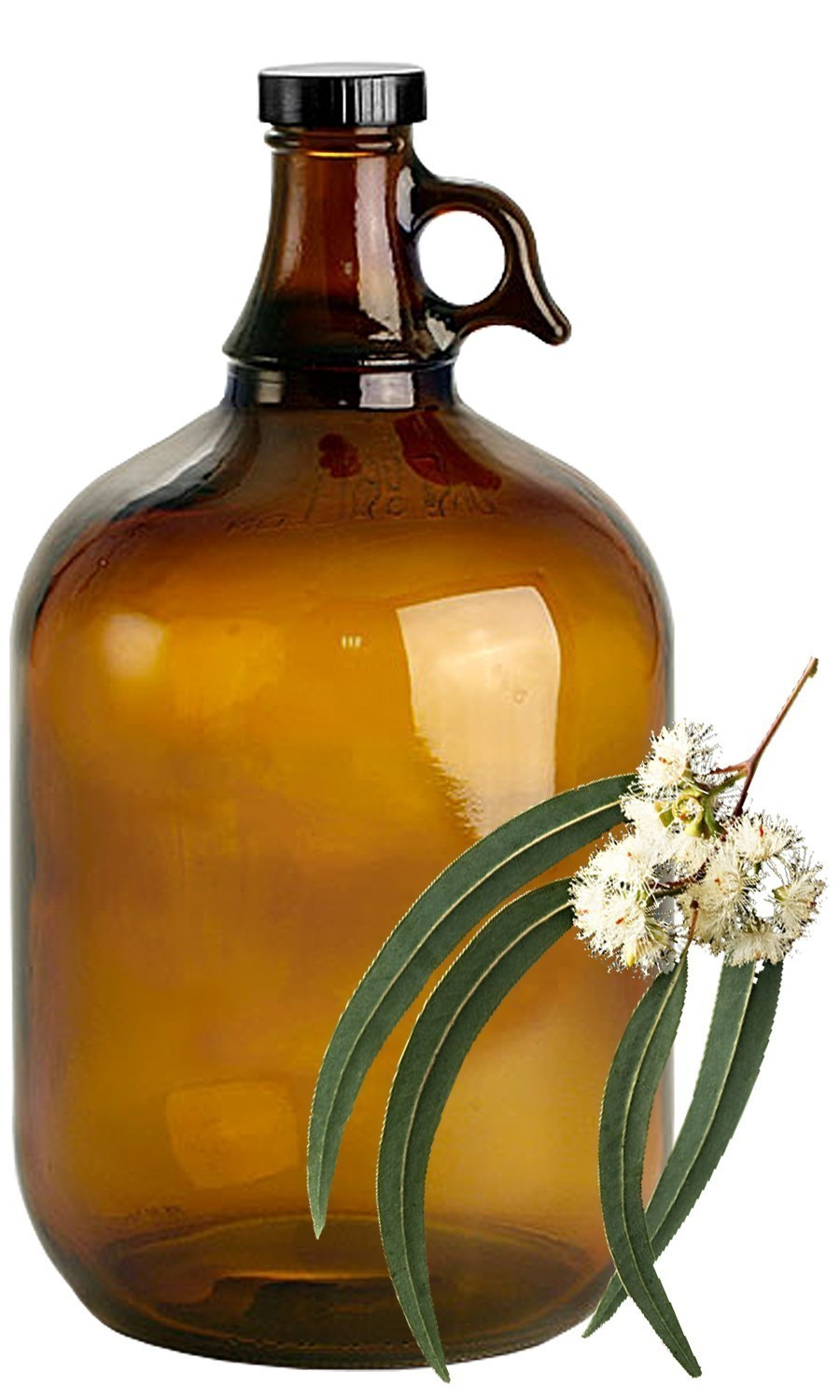 Eucalyptus Bulk Liquid Extracts