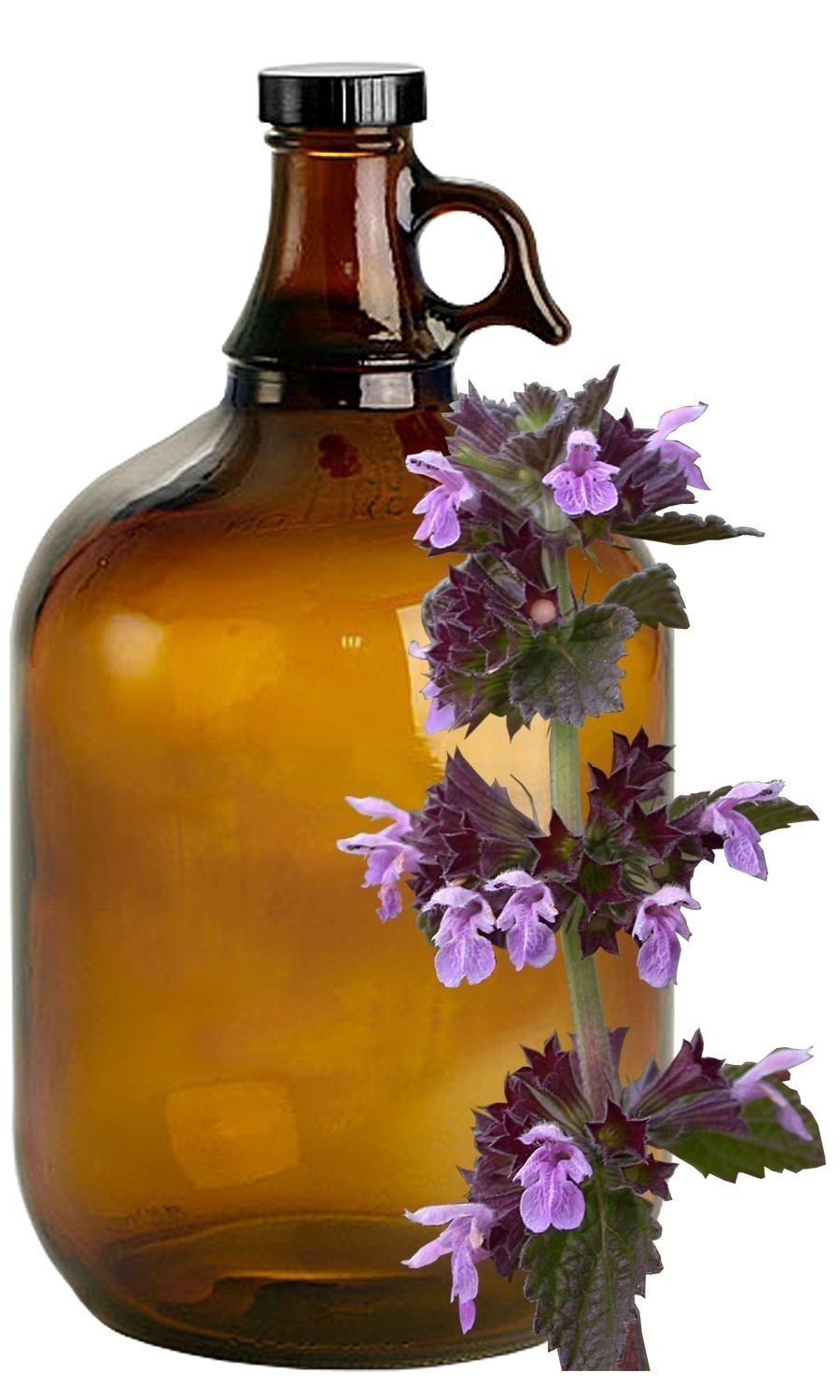 Horehound Bulk Liquid Extracts