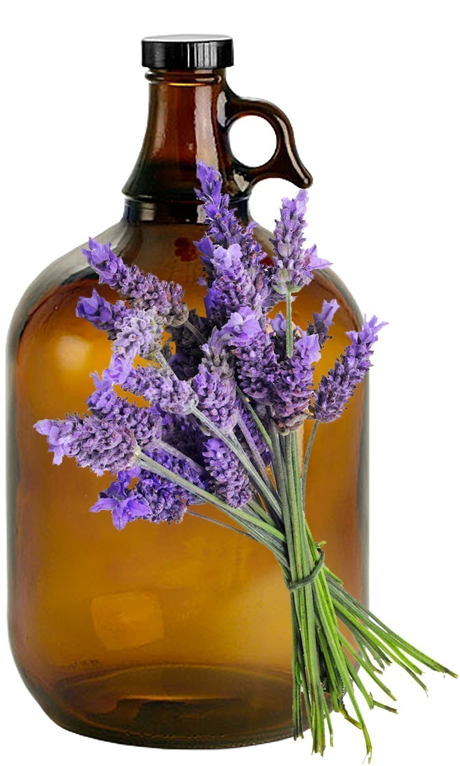 Lavender Bulk Liquid Extracts