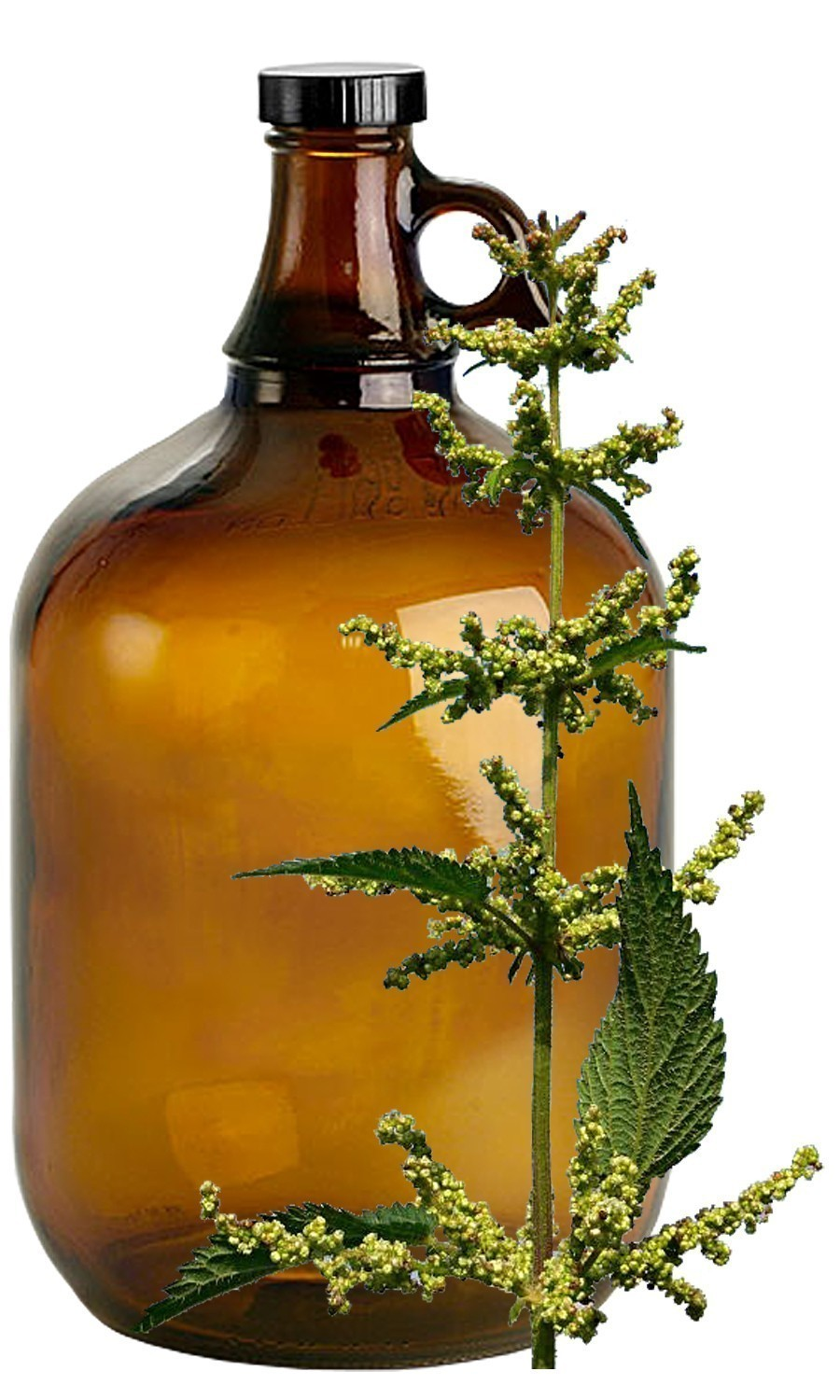 Nettle Bulk Liquid Extracts