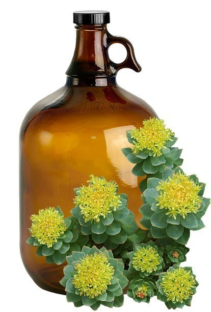 Rhodiola Rosea Bulk Liquid Extracts