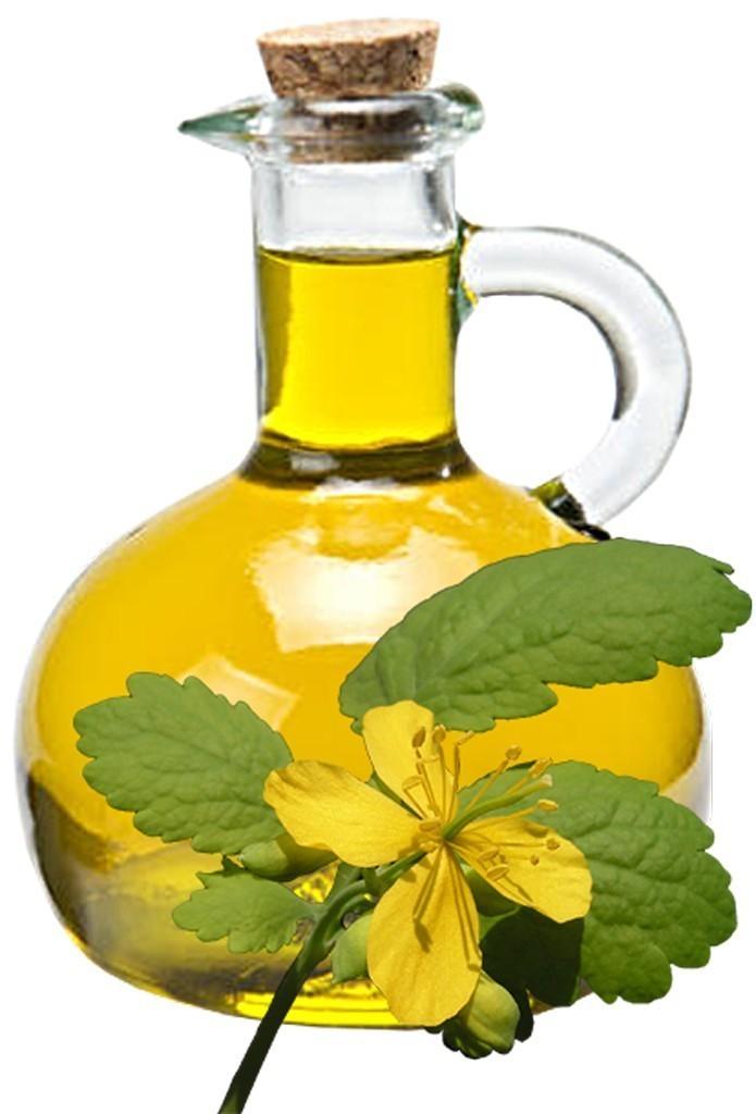 Celandine Oil Bulk Oil