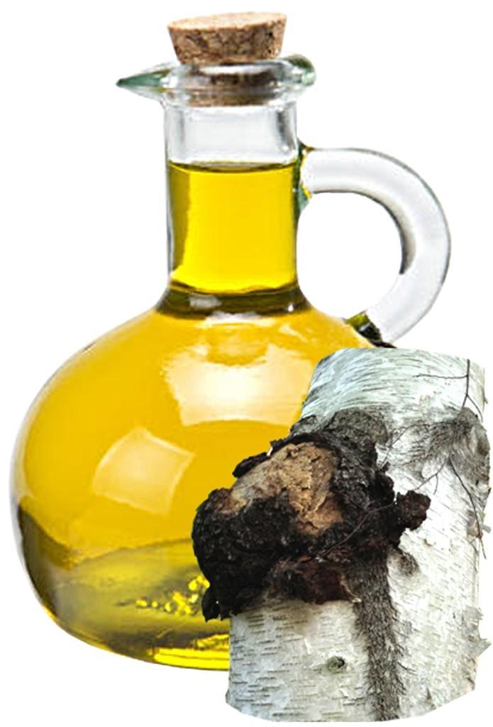 Chaga Oil Bulk Oil