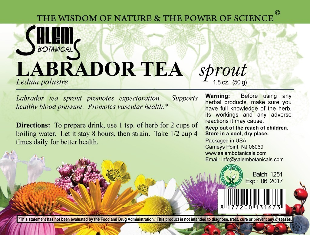 Labrador Tea Sprout 1.8oz (50gr) Dry Herbs, Berries and Fruits