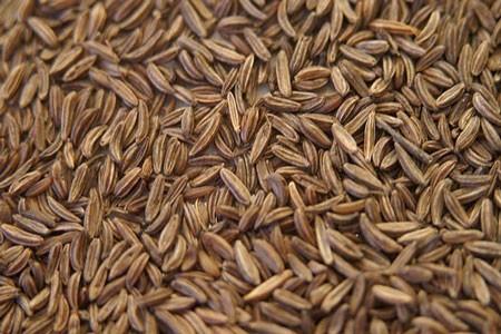 Caraway Seed Bulk Dry Herb
