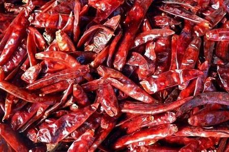 Chili Pepper Bulk Dry Herb
