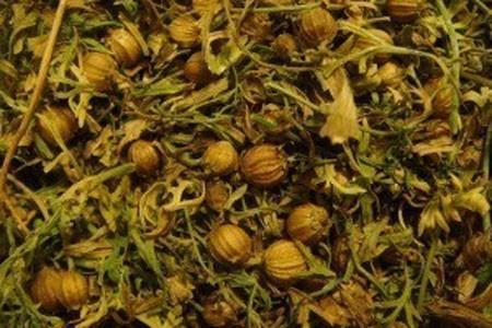 Coriander Seed Bulk Dry Herb