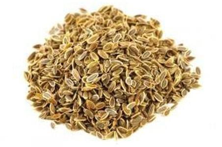Dill Seed Bulk Dry Herb